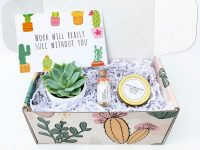 Best Budget friendly corporate gifts in Singapore